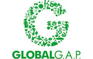 g_logo_235px-jpg_1858531603
